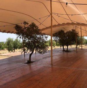 Integración de los elementos Top Tent arboles