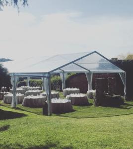 pabellón transparente Top tent