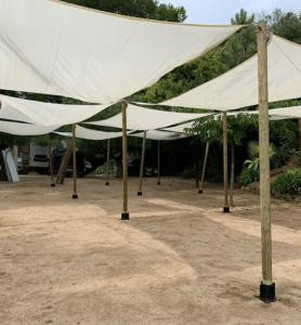 toldos vela eventos top tent