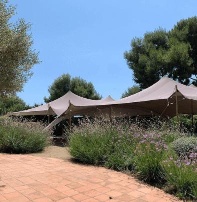 carpas beduinas alquiler bodas